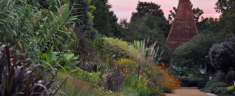 Perennial Border and the Necessary at sunrise