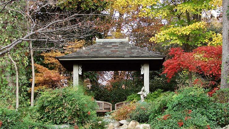 The Maynard Garden
