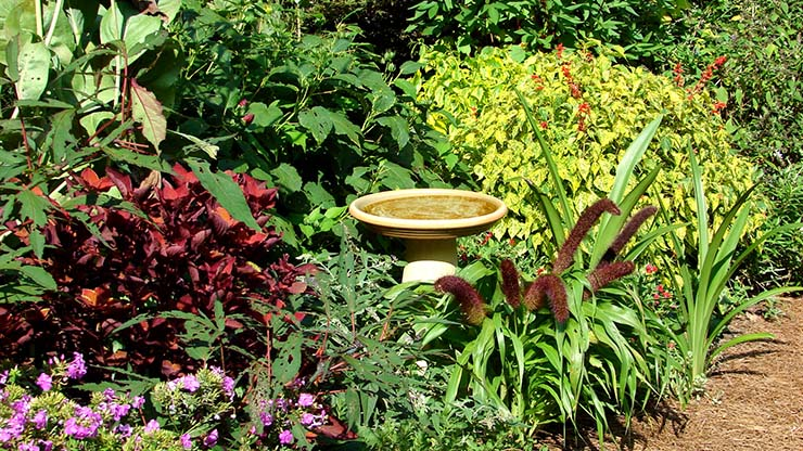 Lane Family Garden