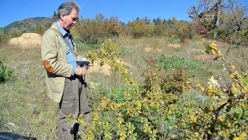 Bill McNamara collecting wild rose species near the Shangri-LaAlpine Botanic Garden at about 11,000 ft. elevation in Shangri -La County innorthwestern Yunnan in October of 2012