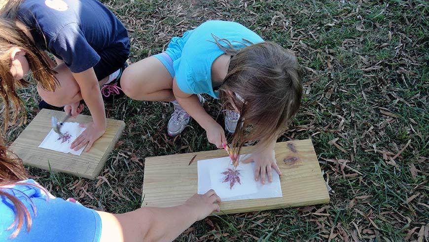Children leaf hammering