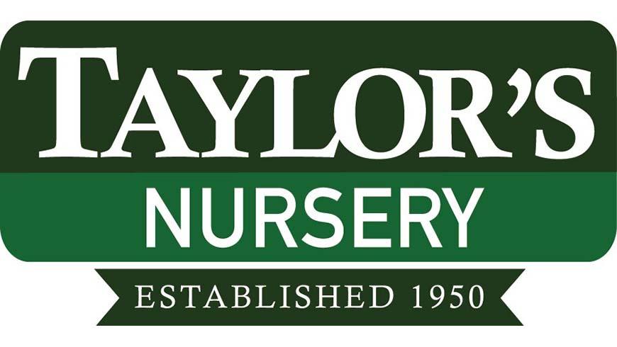 Taylor's Nursery