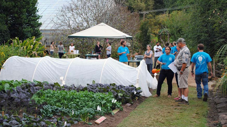 youth vegetable gardening class