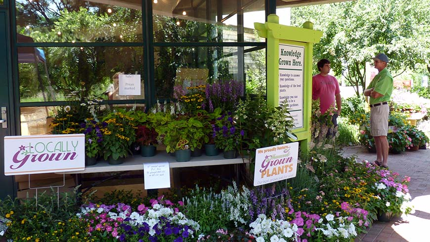floral display at field day