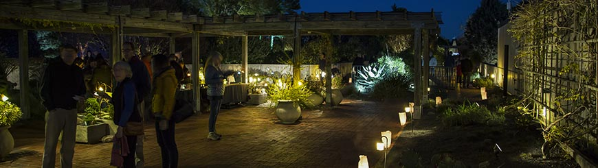 Jc raulston arboretum moonlight in the gardenmembers preview night tickets aloadofball Choice Image
