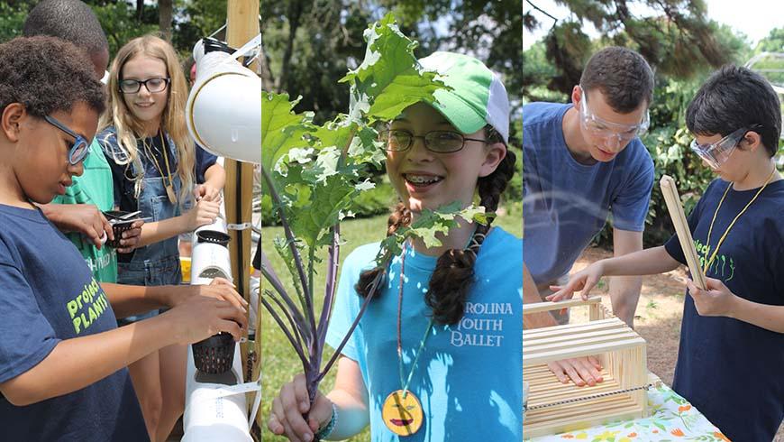 Project PLANTS activities
