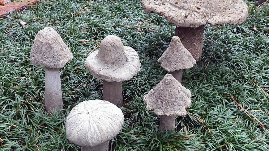 Jc Raulston Arboretum Concrete Garden Mushroom Workshop