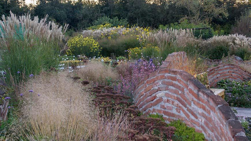 perennials in a fall landscape