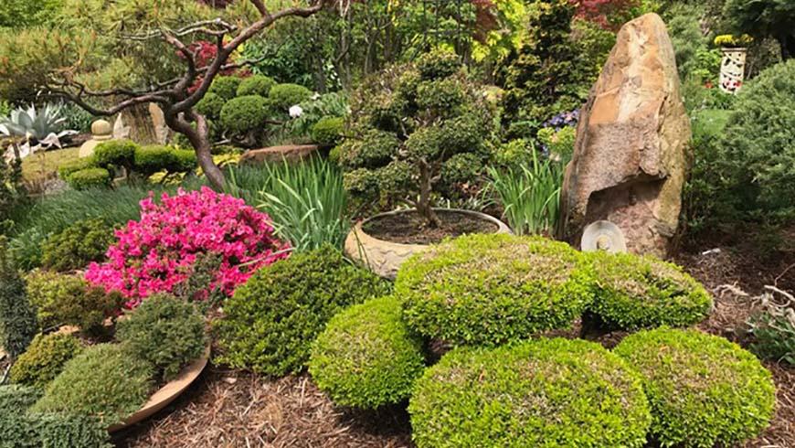 Linda and Bill Pinkham's garden