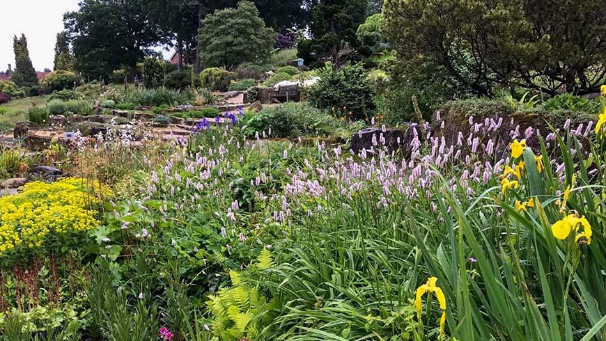 Dyffern Fernant Garden in Wales