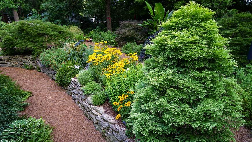 Bryce's home garden