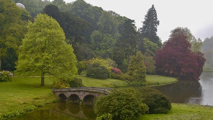 garden scene in England
