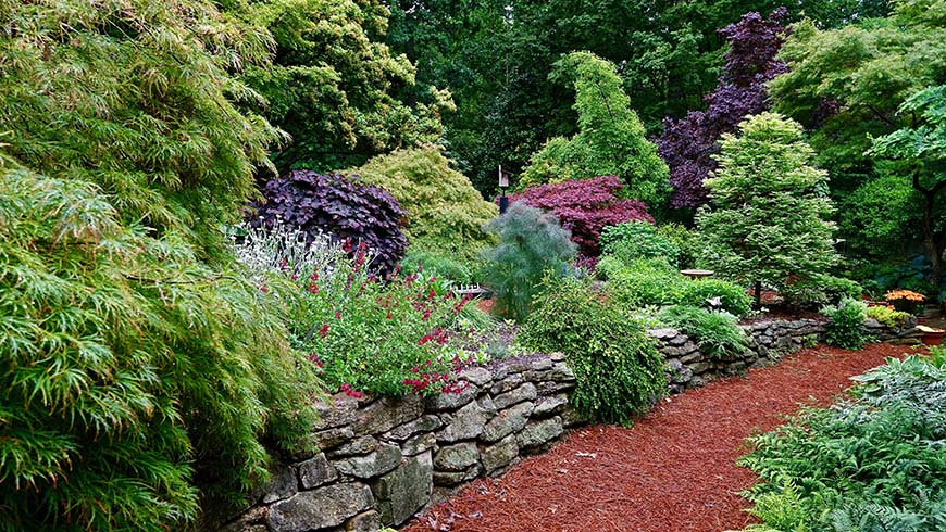 path through garden setting