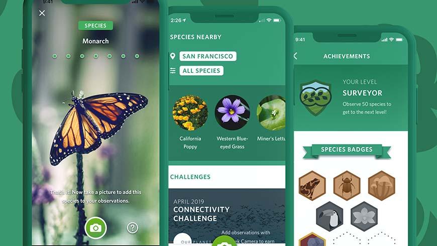 Seek app screen