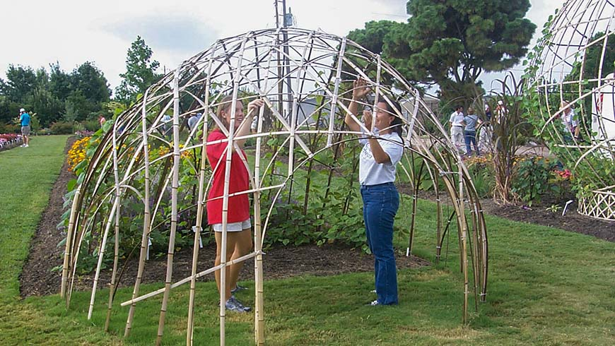 picture of bamboo structure in garden