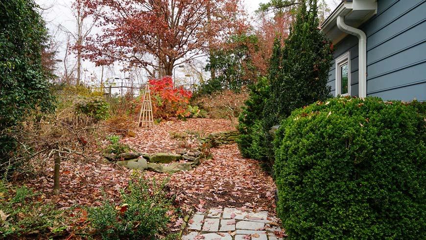 small backyard landscape