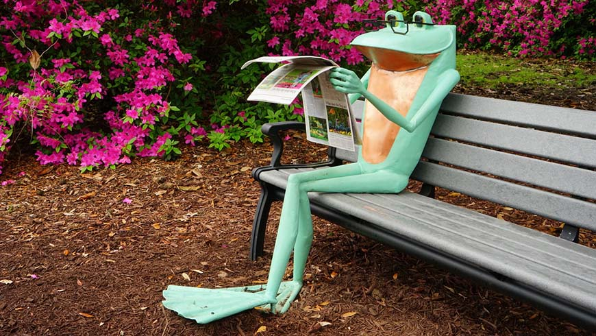 frog sculpture on bench