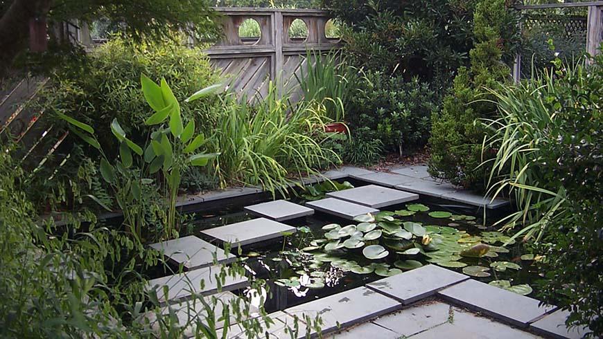 Jc Raulston Arboretum Model Gardens