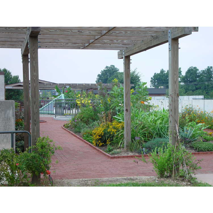 Hawksridge Farms Roof Terrace Garden