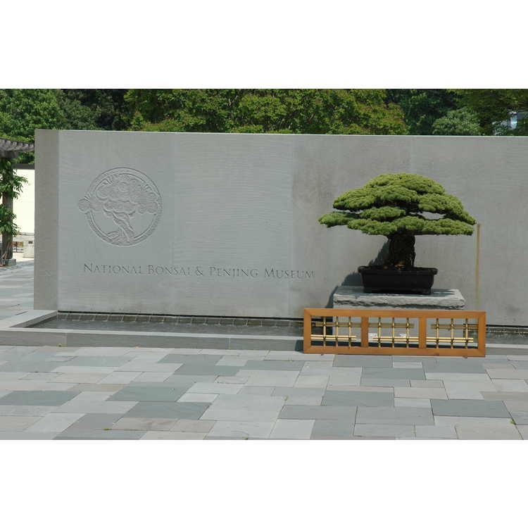 National Bonsai and Penjin Museum