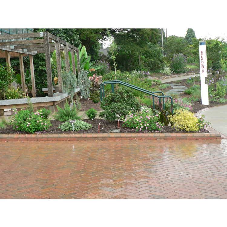 Entrance Pocket Gardens
