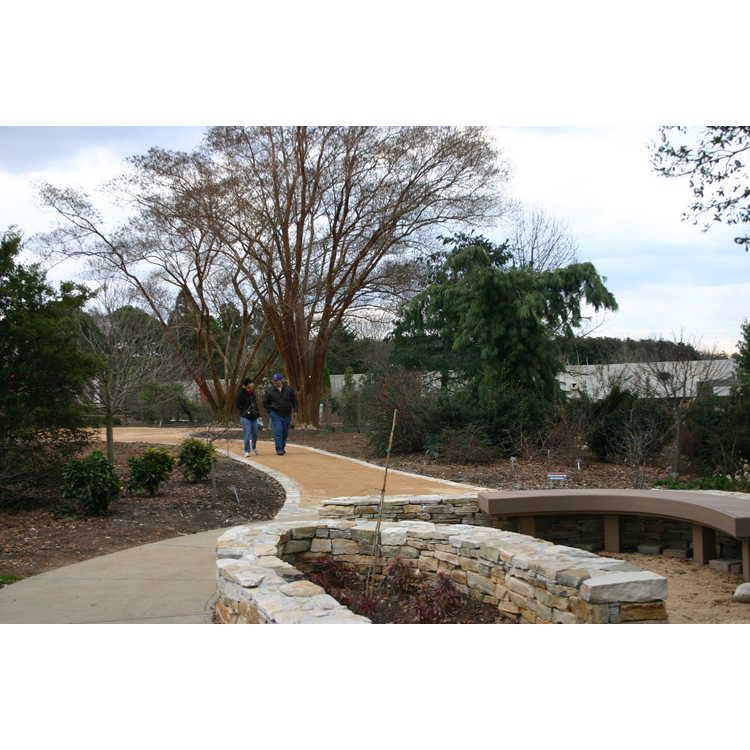 Fantasy Sweep Garden