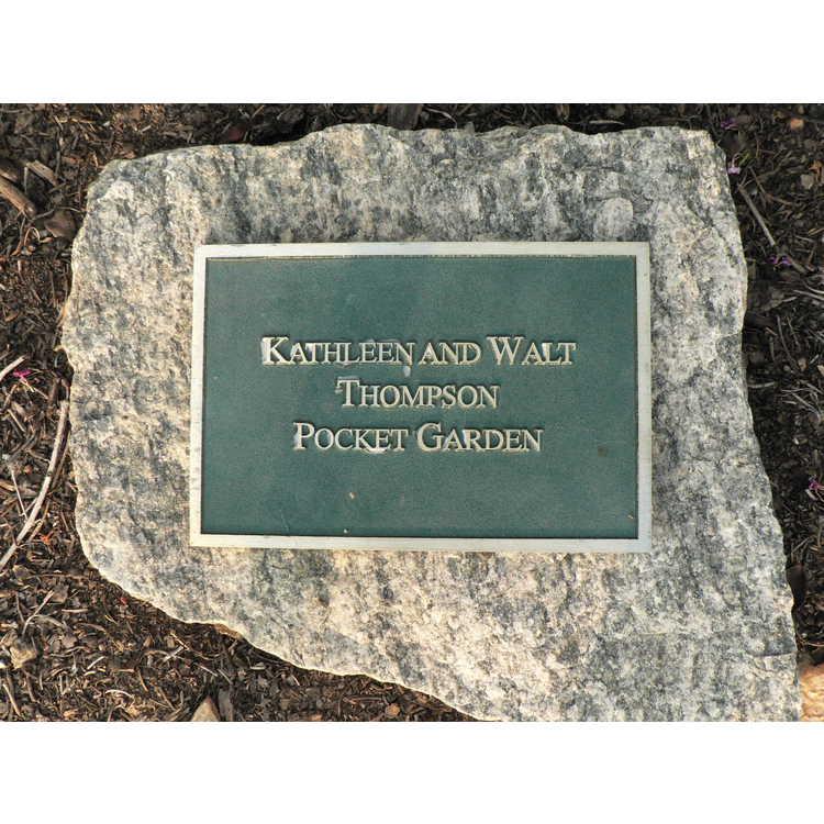 Kathleen and Walt Thompson Pocket Garden