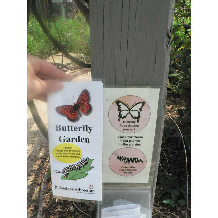 Butterfly Garden (one of the model gardens)