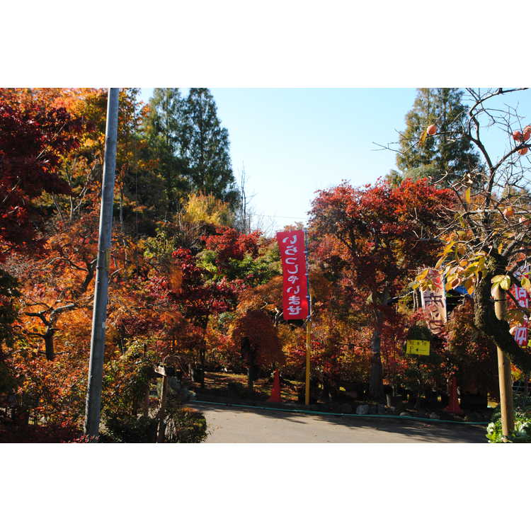 Kawaguchi City