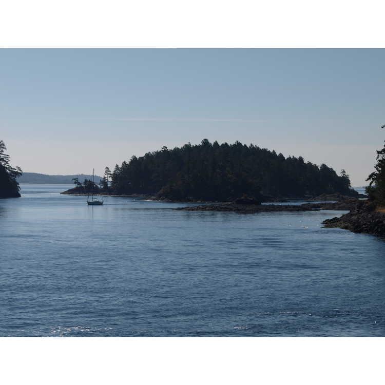 Swartz Bay