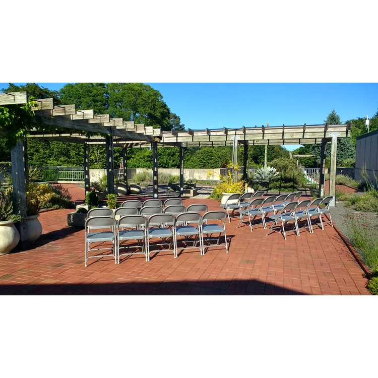 A. E. Finley Foundation Rooftop Terrace