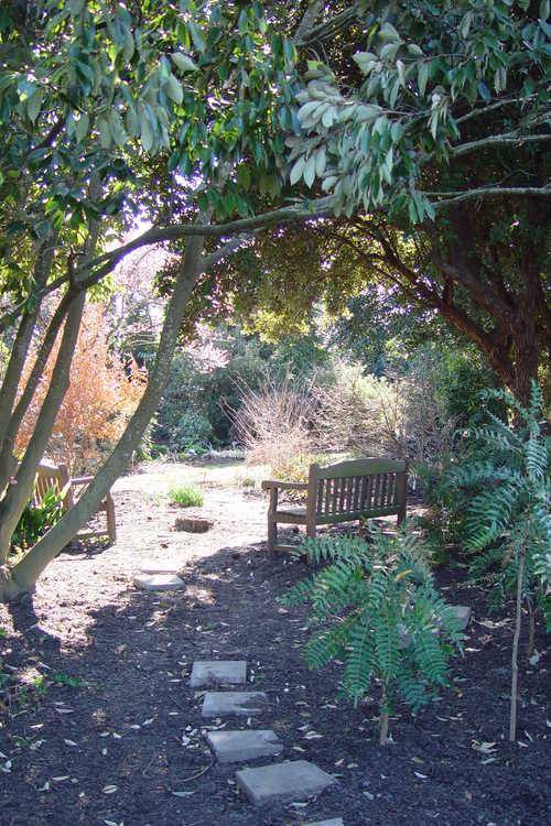 A secret entrance to the Winter Garden