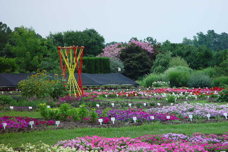 Annual Plant Trials and Demonstration Area