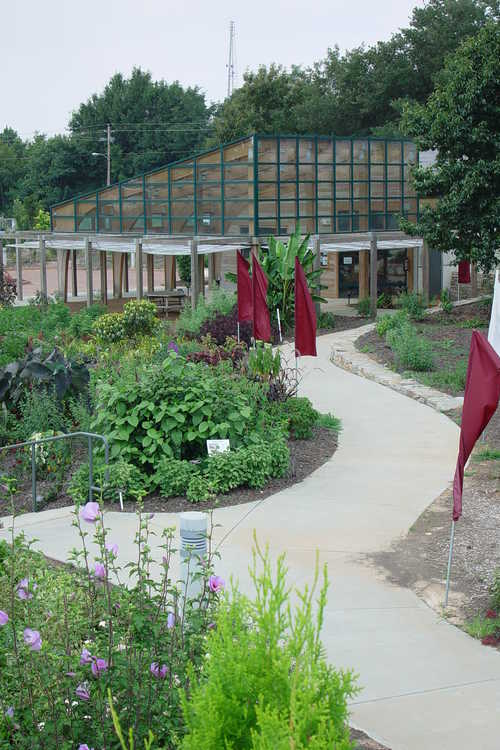 Tender perennials along path to Bookstore and Gift Shop