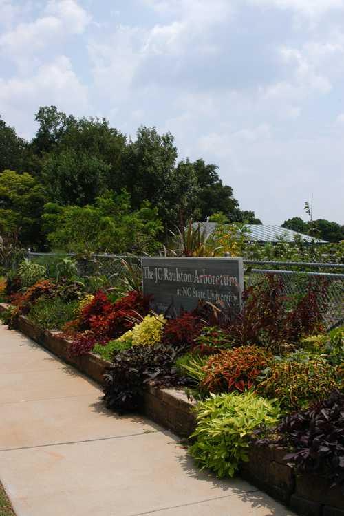 The new Entry Garden