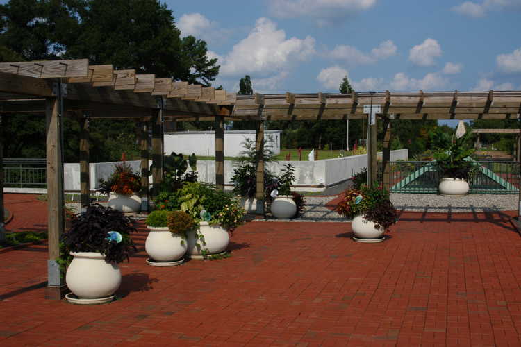 Rucker Roof Terrace Container Gardens