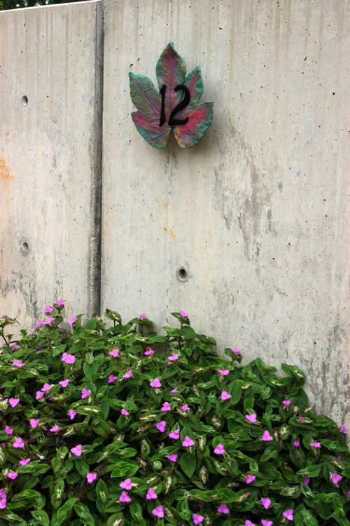 Tradescantia sillamontana (white velvet tradescantia) - New plant bed markers A. E. Finley Rooftop Terrace
