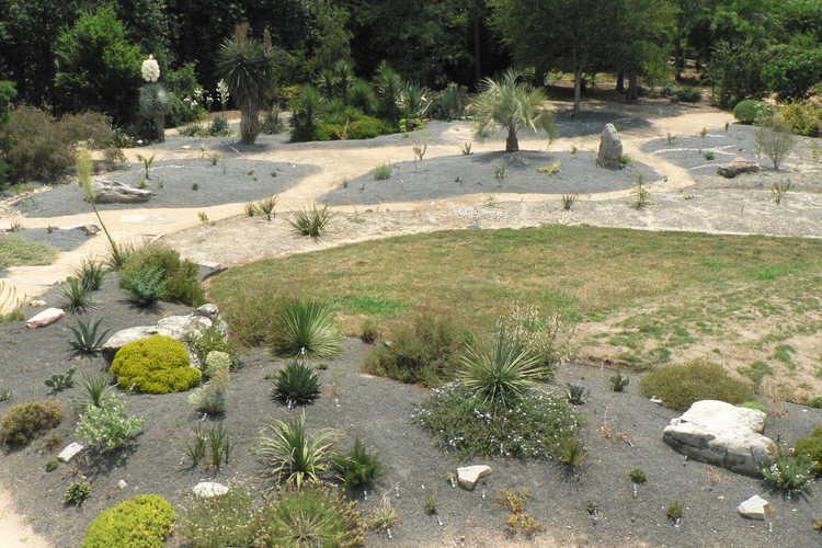 Scree Garden and Xeric Garden