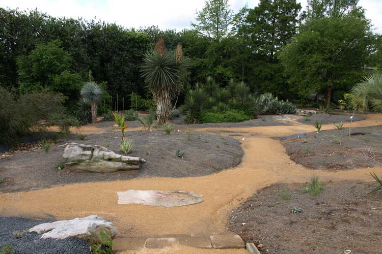 Xeric Garden