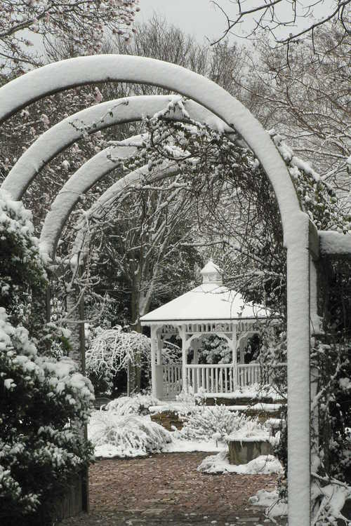 Klein-Pringle White Garden gazebo
