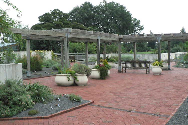 A. E. Finley Rooftop Terrace Gardens