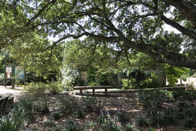 Swindell Contemplation Garden