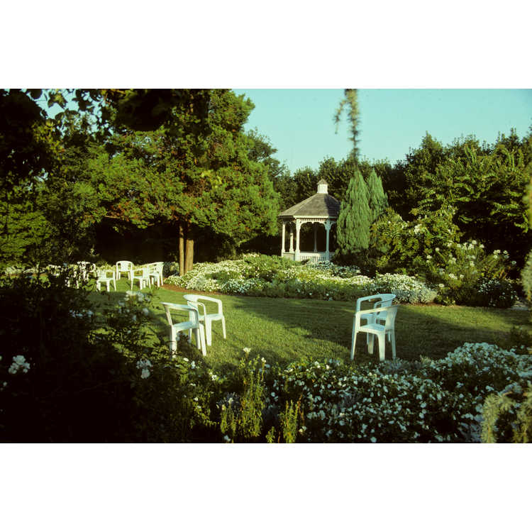 Jc Raulston Arboretum Photographs