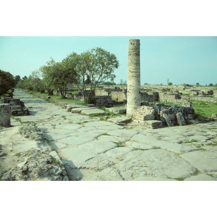 Paestrum