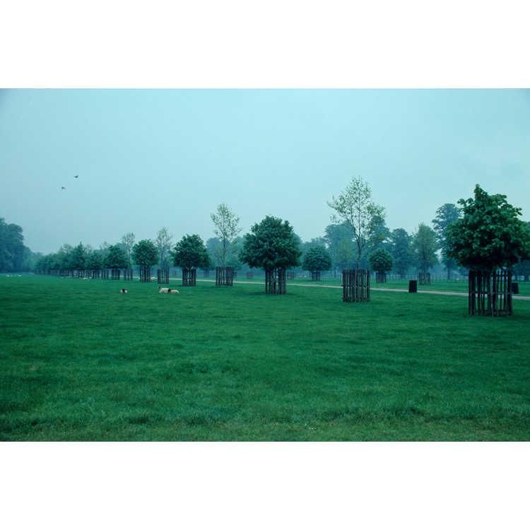 Woodstock, Oxfordshire