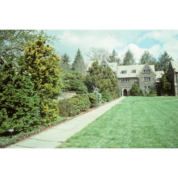 Swarthmore